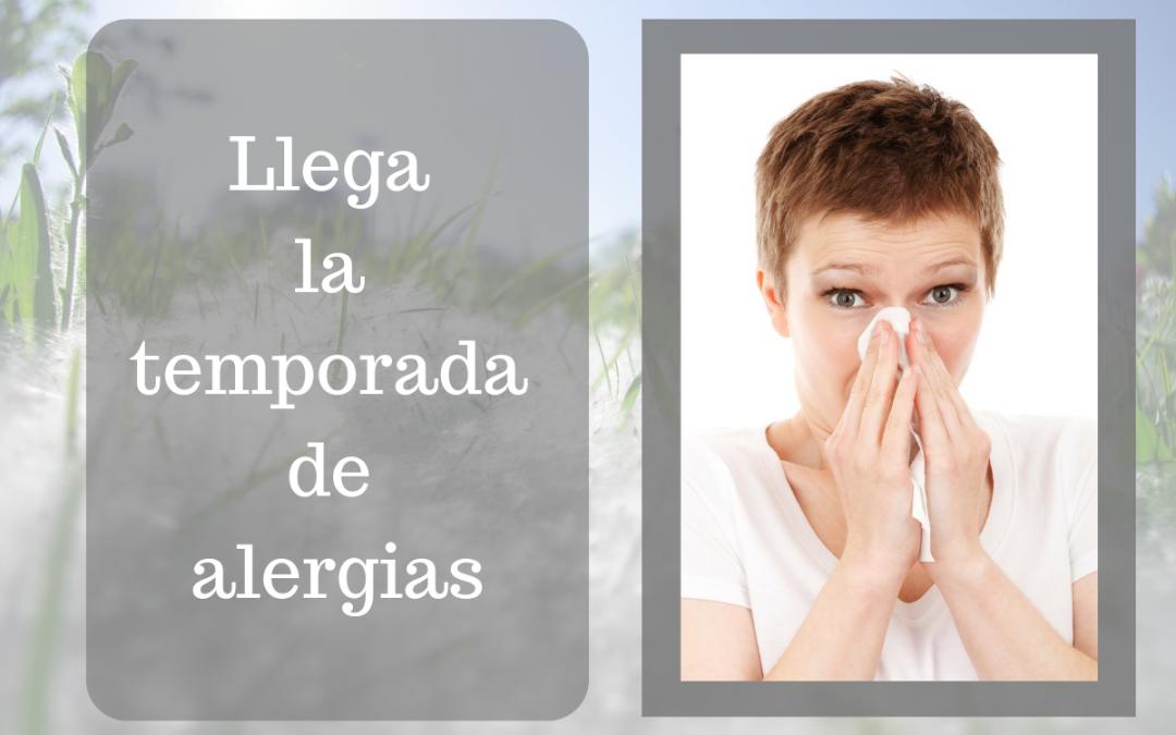 Llega la temporada de alergias